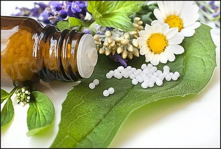 Homöopathie hilft bei vielfachen Problemen bei Pferd, Hund und Katz, z.B. Arthrosen, Stoffwechsel- u. gynäkologischen Problemen
