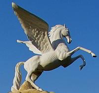 osteopathie bringt pferde zum fliegen