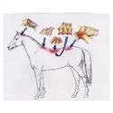 Schmerzpunkte Pferd osteopathische Läsionen