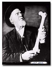 dr still, begründer der osteopathie