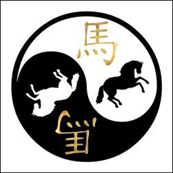 akupunktur pferd, akupunktur hund, akupunktur katze